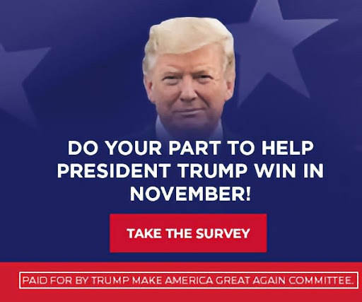 Trump Sample Ad 2