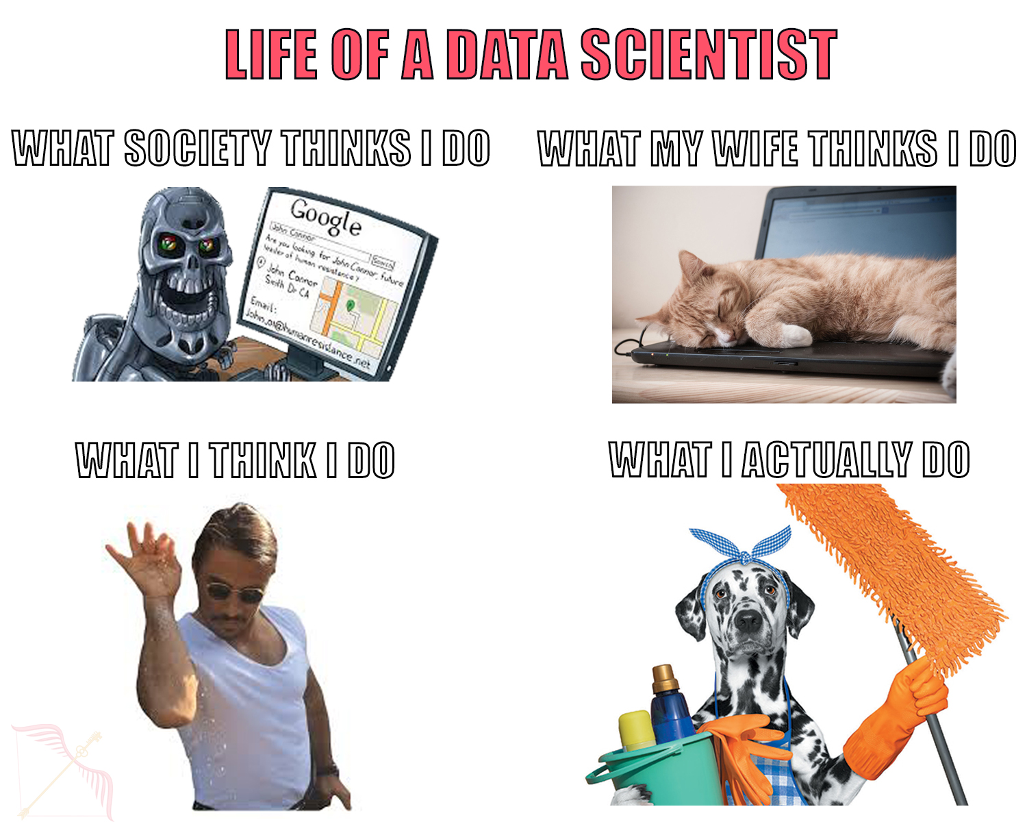 Data Science Life