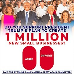 do you support president trump's plan to create 1 million new small businesses