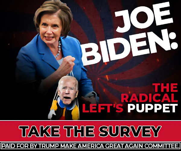 Joe Biden the radical lefts puppet