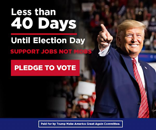 Less than 40 days until election day support jobs not mobs