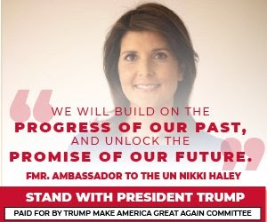 Nikki Haley Quote 2