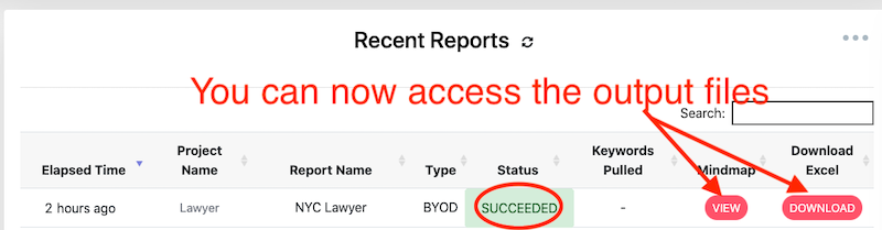 Report Succeeded