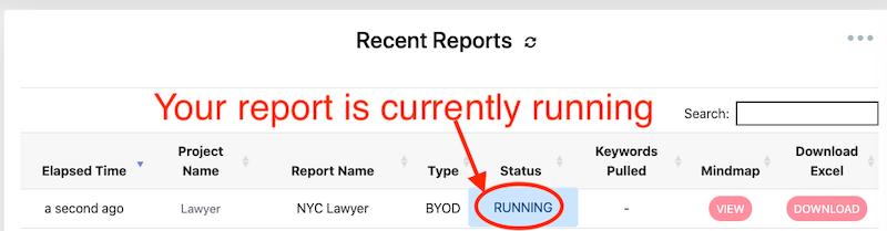 Report Is Running